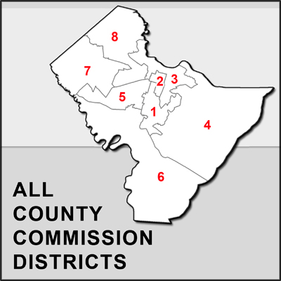 Chatham County Commission Overview map