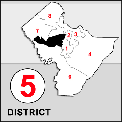 Chatham County Commission 5 map