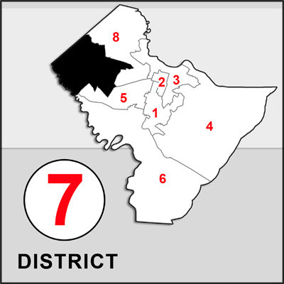 Chatham County Commission 7 map